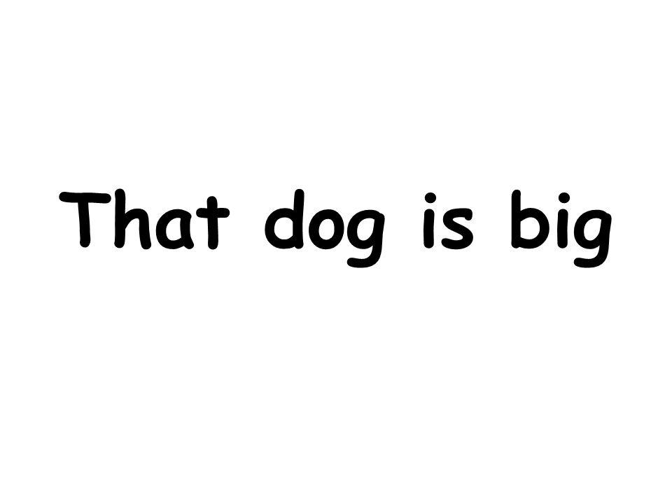 That dog is big