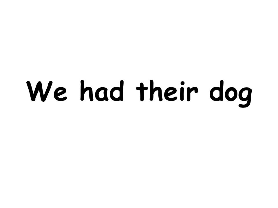 We had their dog