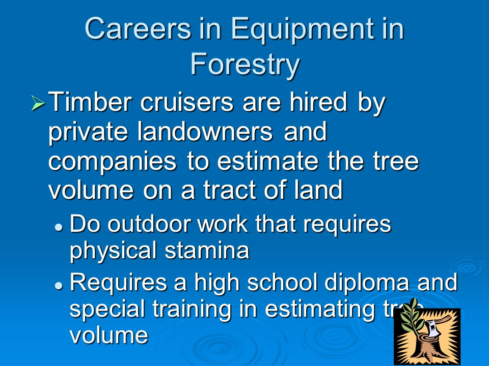 Careers in Equipment in Forestry  Timber cruisers are hired by private landowners and companies to estimate the tree volume on a tract of land Do outdoor work that requires physical stamina Do outdoor work that requires physical stamina Requires a high school diploma and special training in estimating tree volume Requires a high school diploma and special training in estimating tree volume
