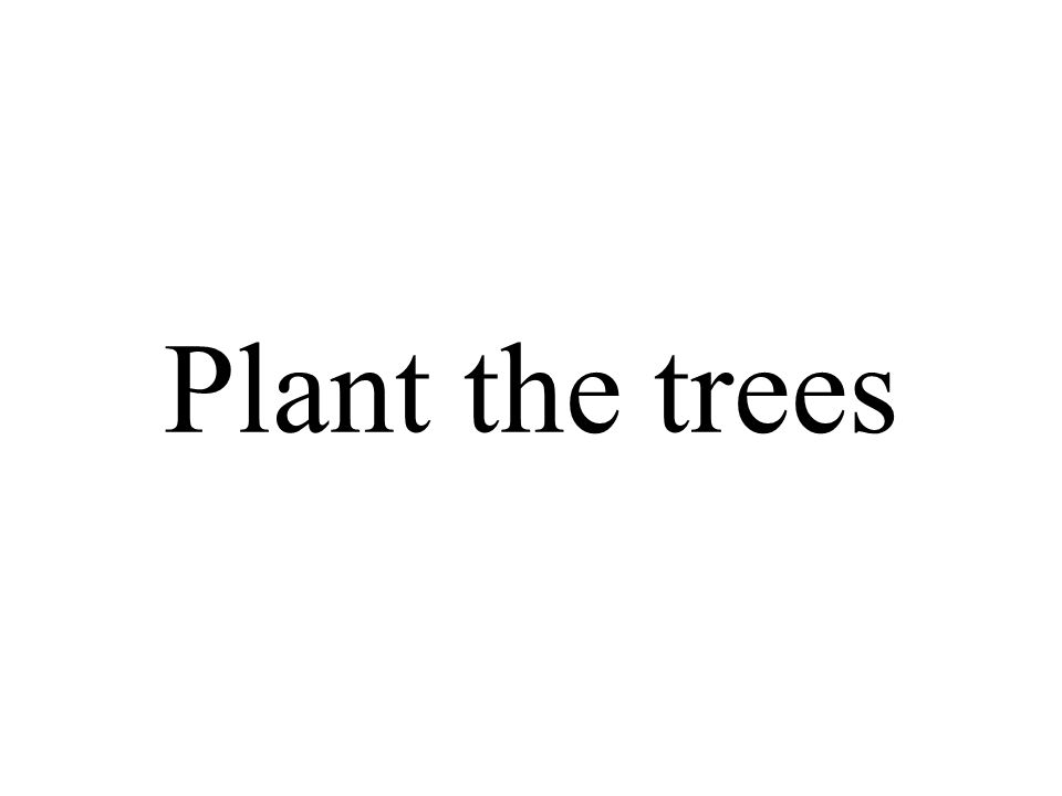 Plant the trees