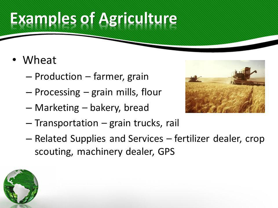 Wheat – Production – farmer, grain – Processing – grain mills, flour – Marketing – bakery, bread – Transportation – grain trucks, rail – Related Suppl