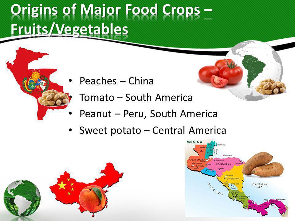 Peaches – China Tomato – South America Peanut – Peru, South America Sweet potato – Central America