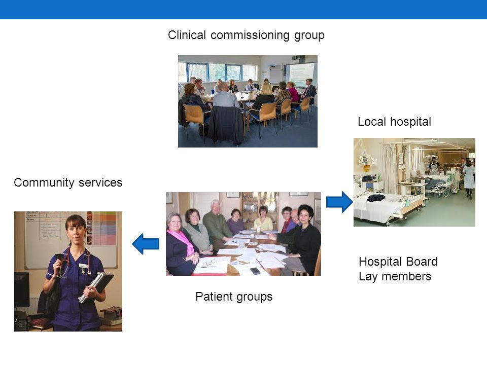 Sarah Community services Local hospital Public health Clinical commissioning group Hospital Board Lay members Patient groups