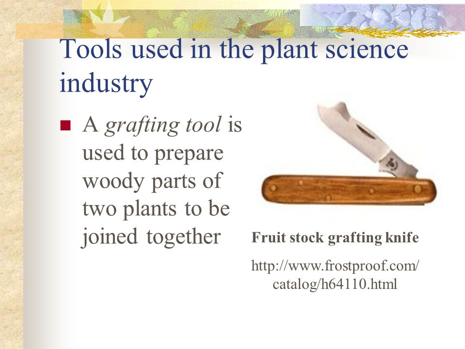 Tools used in the plant science industry A grafting tool is used to prepare woody parts of two plants to be joined together Fruit stock grafting knife