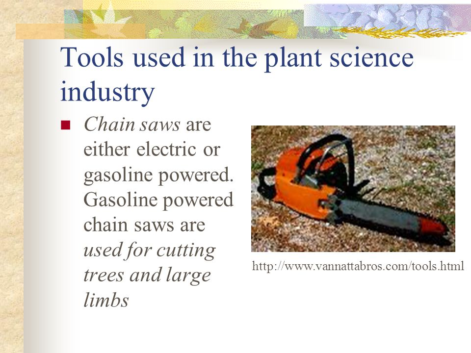 Tools used in the plant science industry Chain saws are either electric or gasoline powered. Gasoline powered chain saws are used for cutting trees an
