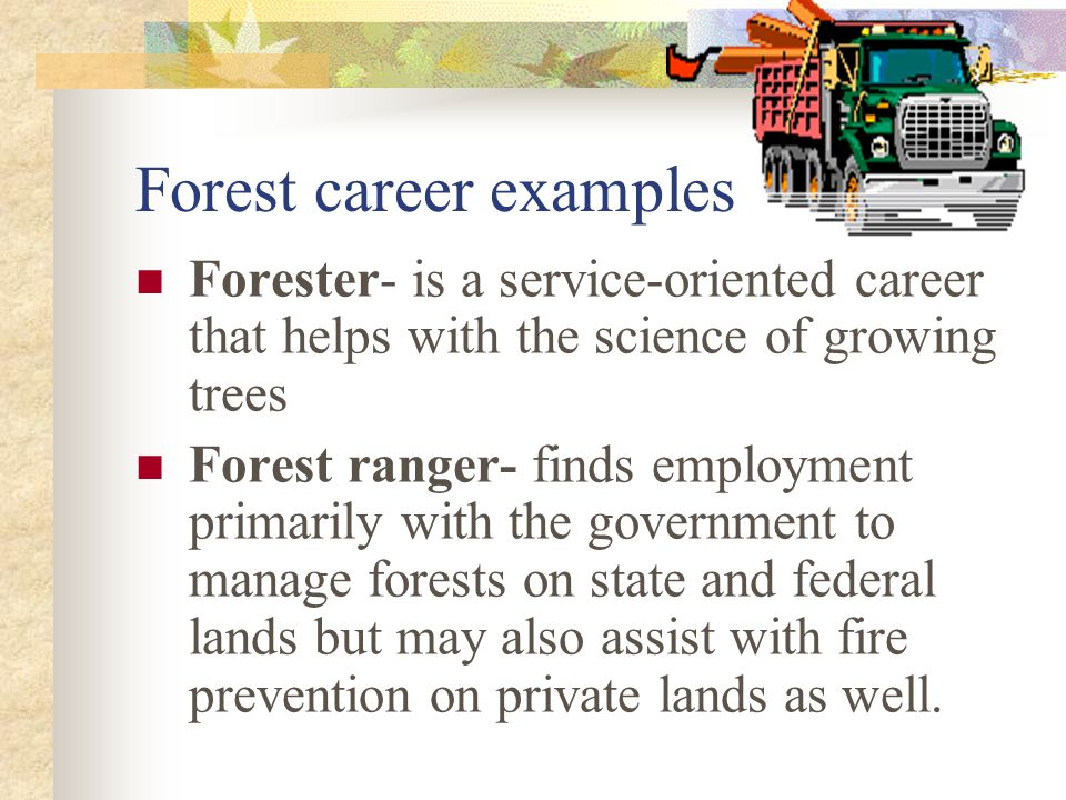 Forest career examples Forester- is a service-oriented career that helps with the science of growing trees Forest ranger- finds employment primarily w