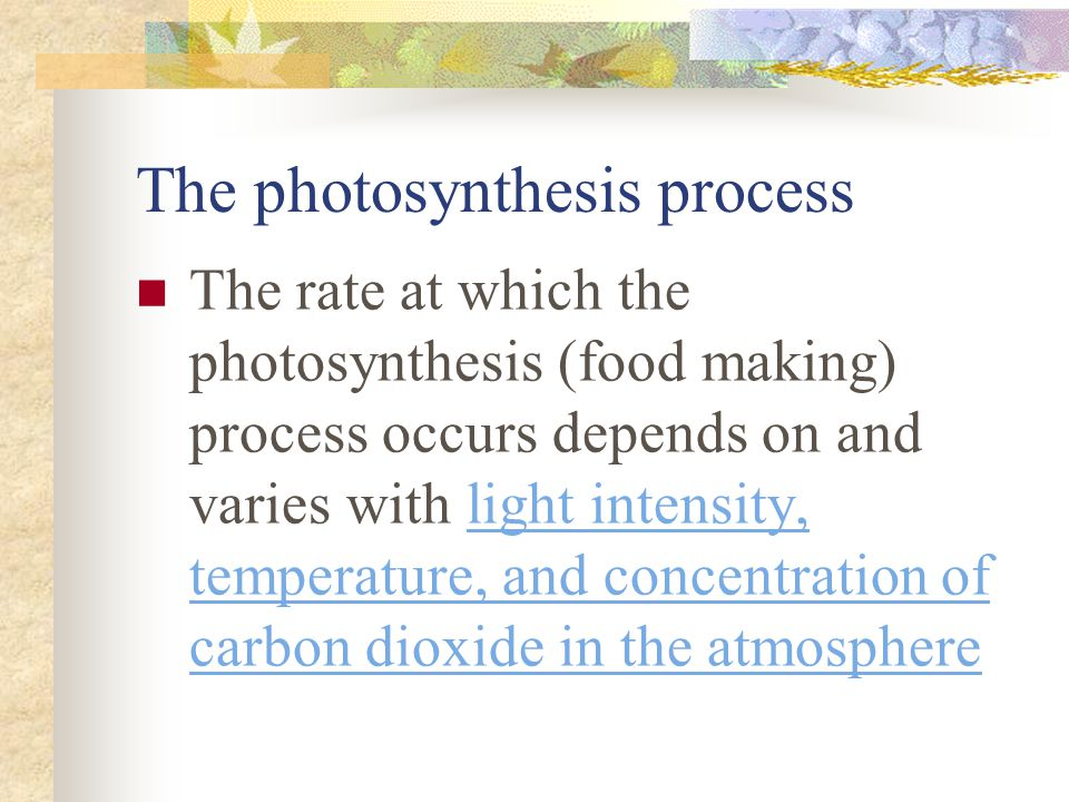 The photosynthesis process The rate at which the photosynthesis (food making) process occurs depends on and varies with light intensity, temperature,