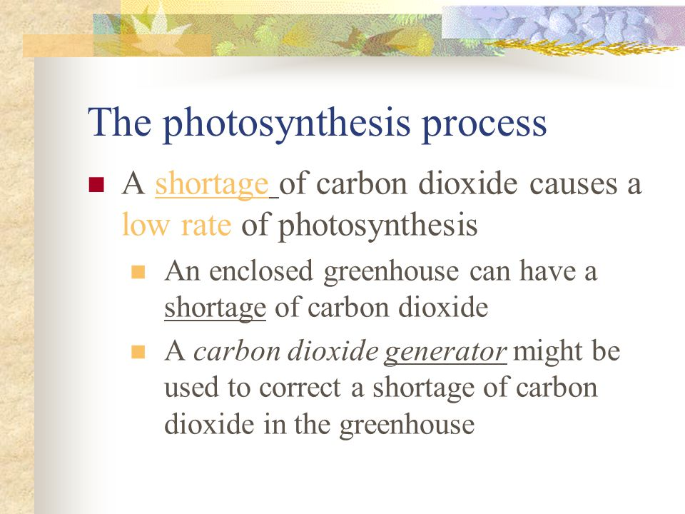 The photosynthesis process A shortage of carbon dioxide causes a low rate of photosynthesis An enclosed greenhouse can have a shortage of carbon dioxi