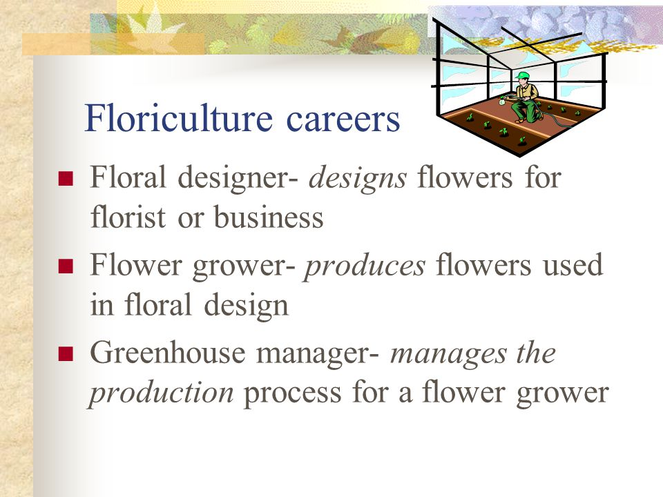 Floriculture careers Floral designer- designs flowers for florist or business Flower grower- produces flowers used in floral design Greenhouse manager