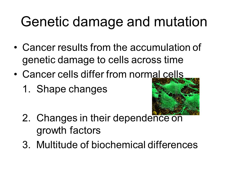 Genetic damage and mutation Cancer results from the accumulation of genetic damage to cells across time Cancer cells differ from normal cells 1.Shape changes 2.Changes in their dependence on growth factors 3.