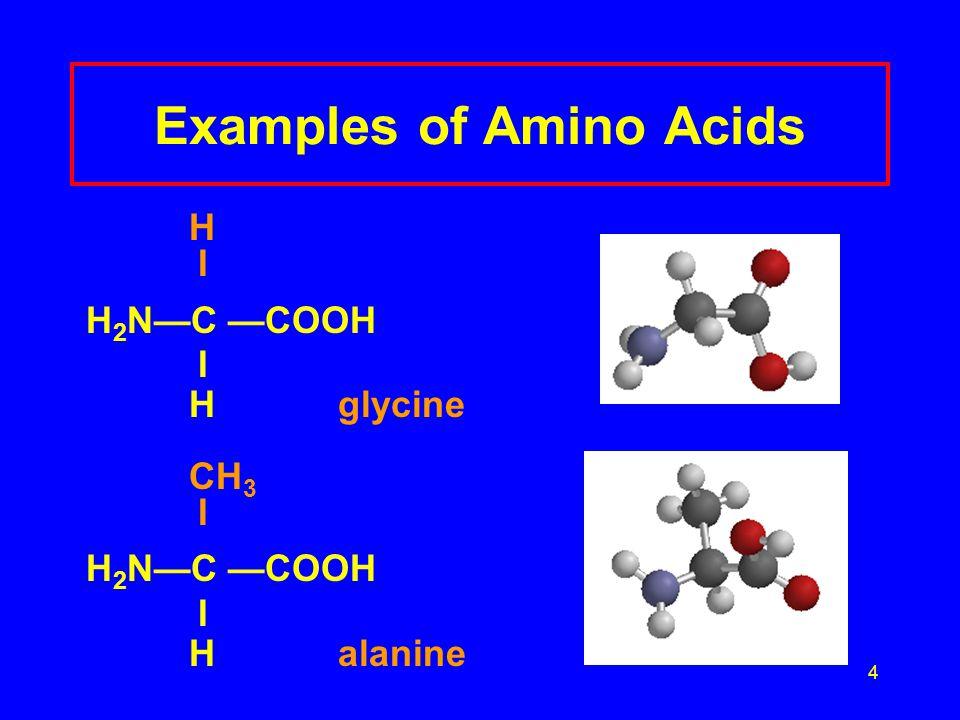 4 Examples of Amino Acids H I H 2 N—C —COOH I Hglycine CH 3 I H 2 N—C —COOH I Halanine