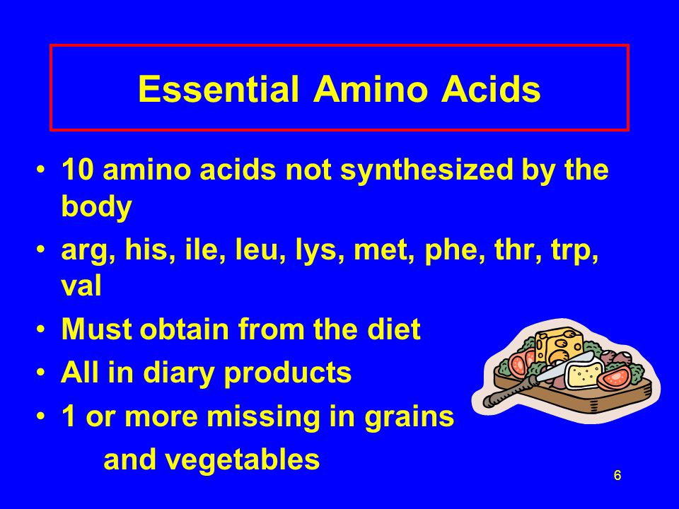 6 Essential Amino Acids 10 amino acids not synthesized by the body arg, his, ile, leu, lys, met, phe, thr, trp, val Must obtain from the diet All in diary products 1 or more missing in grains and vegetables