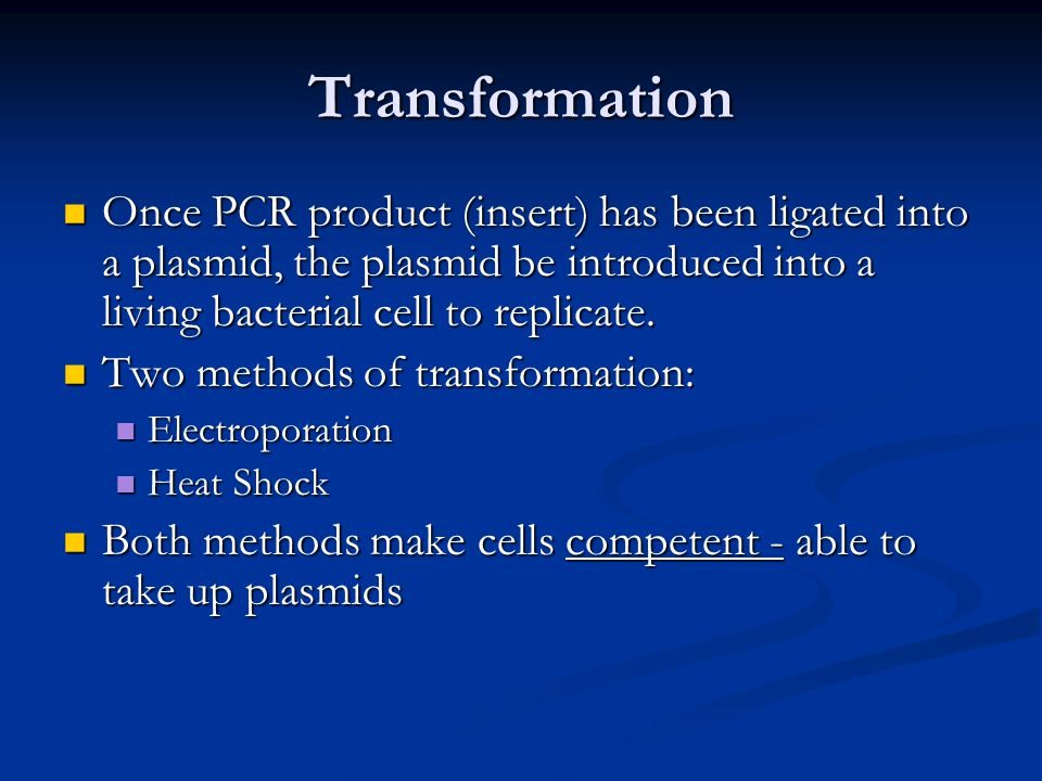 Transformation Once PCR product (insert) has been ligated into a plasmid, the plasmid be introduced into a living bacterial cell to replicate. Once PC