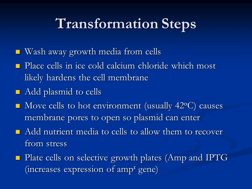 Transformation Steps Wash away growth media from cells Wash away growth media from cells Place cells in ice cold calcium chloride which most likely ha