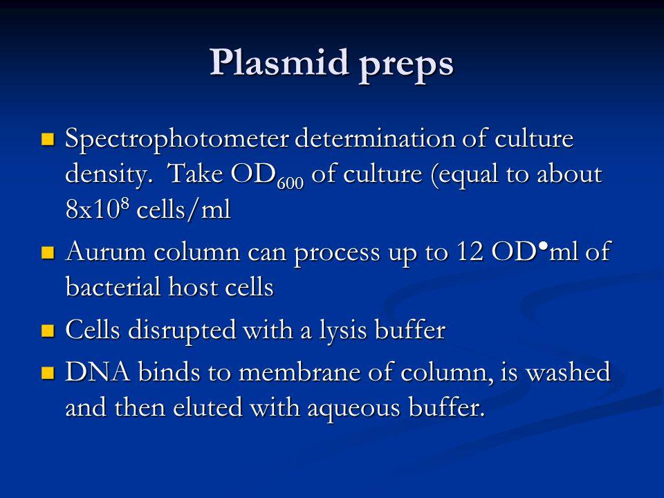 Plasmid preps Spectrophotometer determination of culture density.