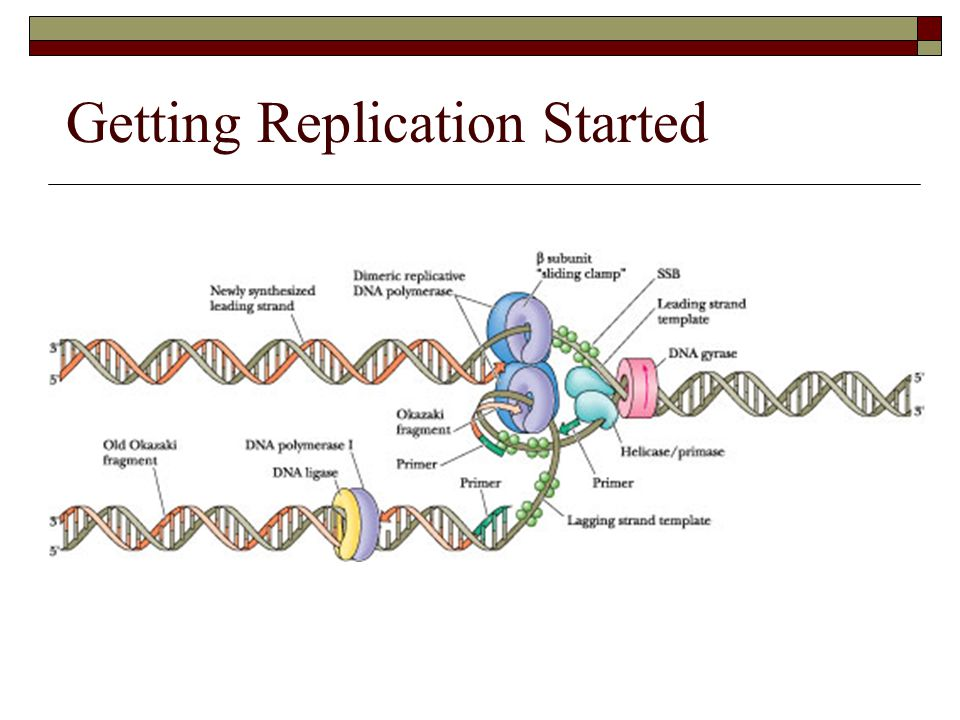 Getting Replication Started