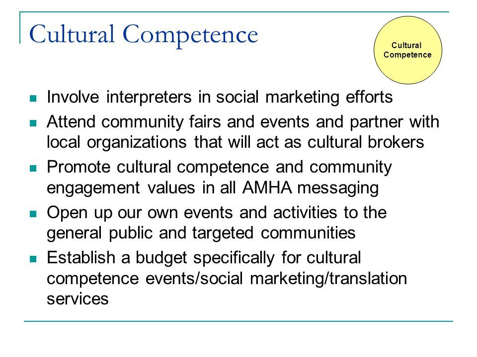 Cultural Competence Involve interpreters in social marketing efforts Attend community fairs and events and partner with local organizations that will act as cultural brokers Promote cultural competence and community engagement values in all AMHA messaging Open up our own events and activities to the general public and targeted communities Establish a budget specifically for cultural competence events/social marketing/translation services Cultural Competence