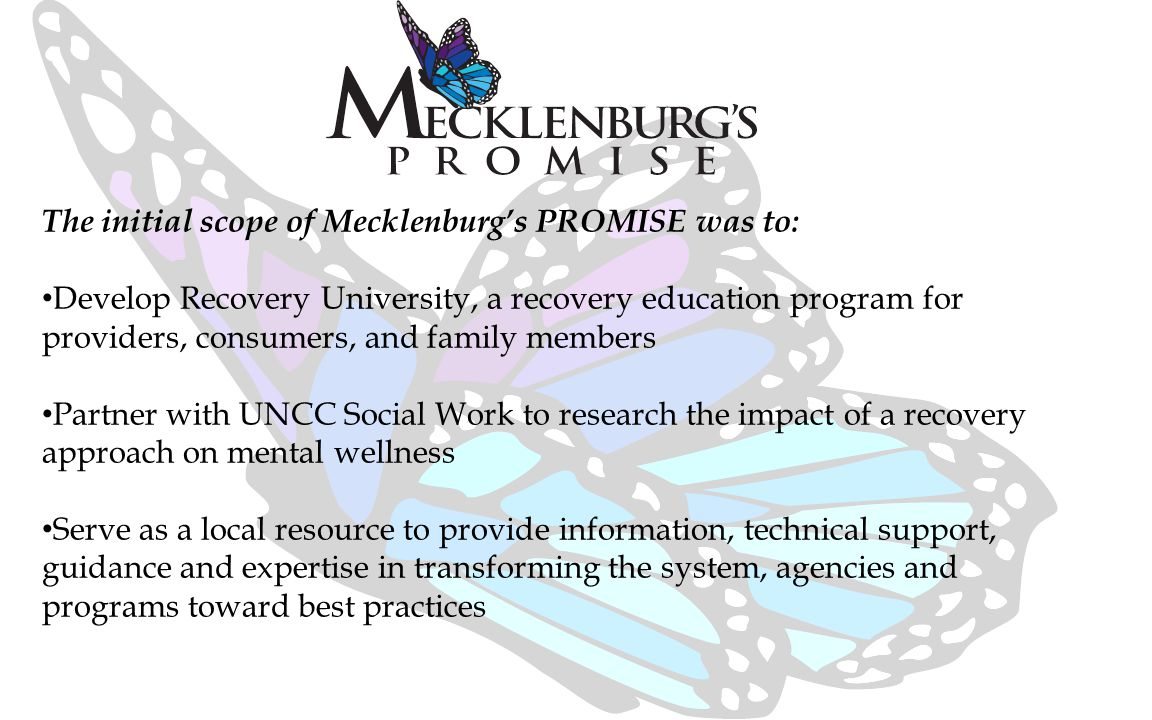 The initial scope of Mecklenburg's PROMISE was to: Develop Recovery University, a recovery education program for providers, consumers, and family members Partner with UNCC Social Work to research the impact of a recovery approach on mental wellness Serve as a local resource to provide information, technical support, guidance and expertise in transforming the system, agencies and programs toward best practices