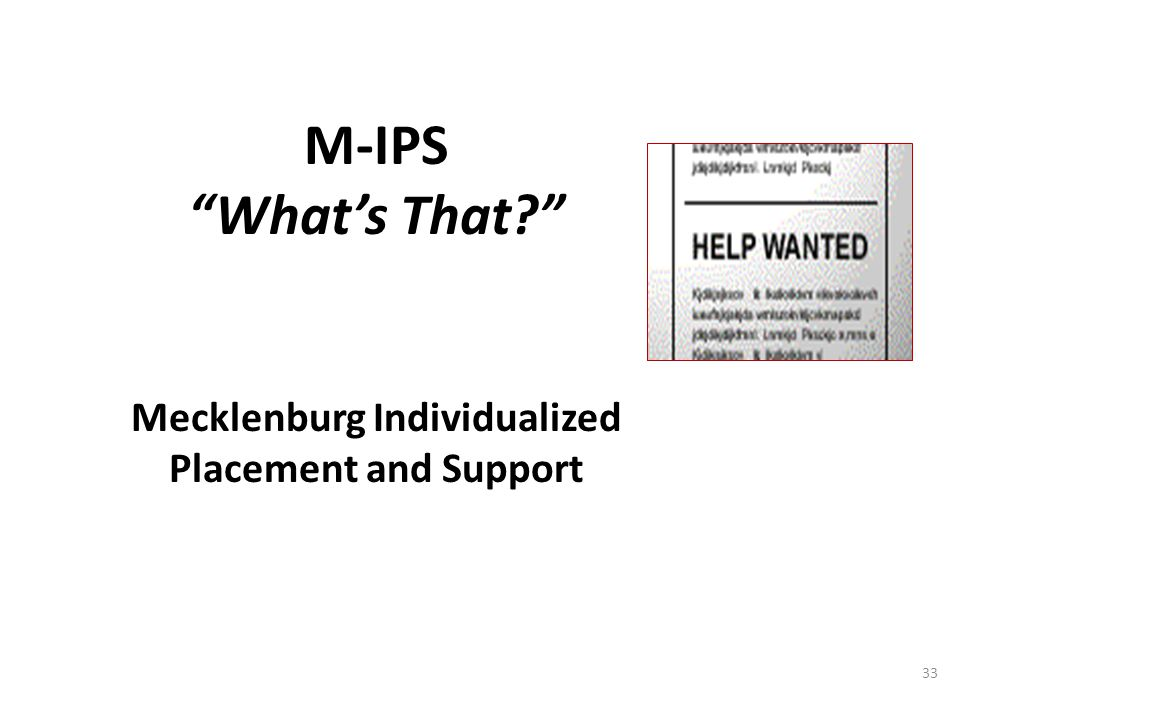 """33 M-IPS """"What's That?"""" Mecklenburg Individualized Placement and Support"""