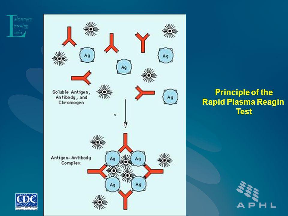 Principle of the Rapid Plasma Reagin Test