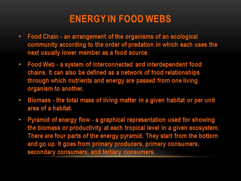 ENERGY IN FOOD WEBS Food Chain - an arrangement of the organisms of an ecological community according to the order of predation in which each uses the