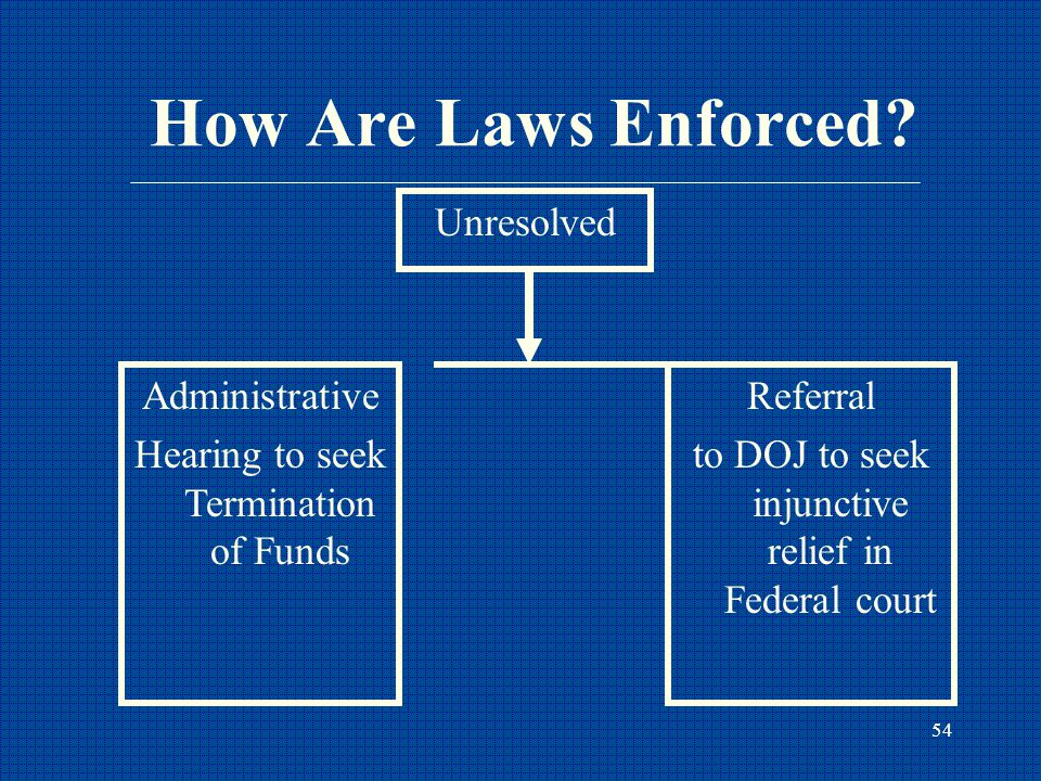 54 How Are Laws Enforced.