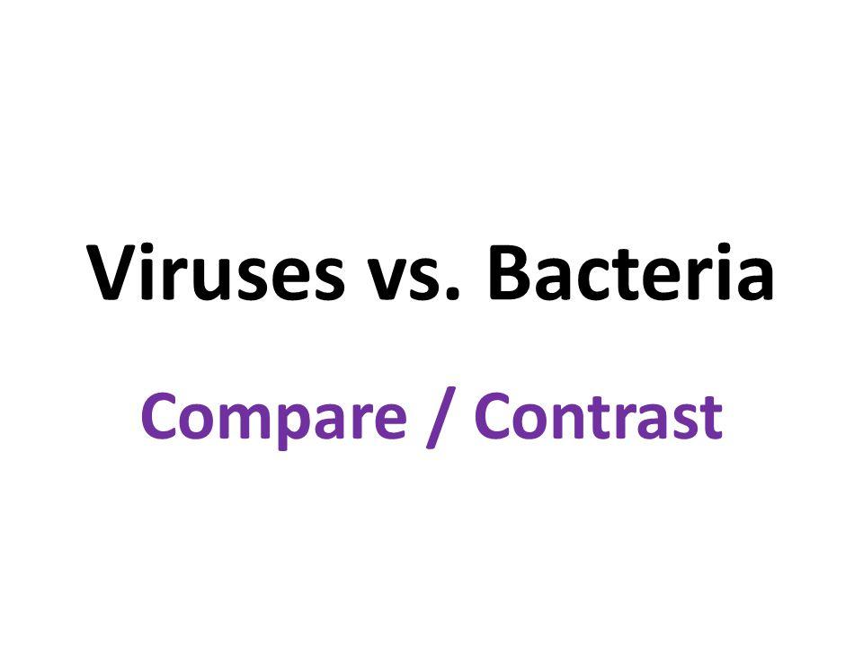 Viruses vs. Bacteria Compare / Contrast