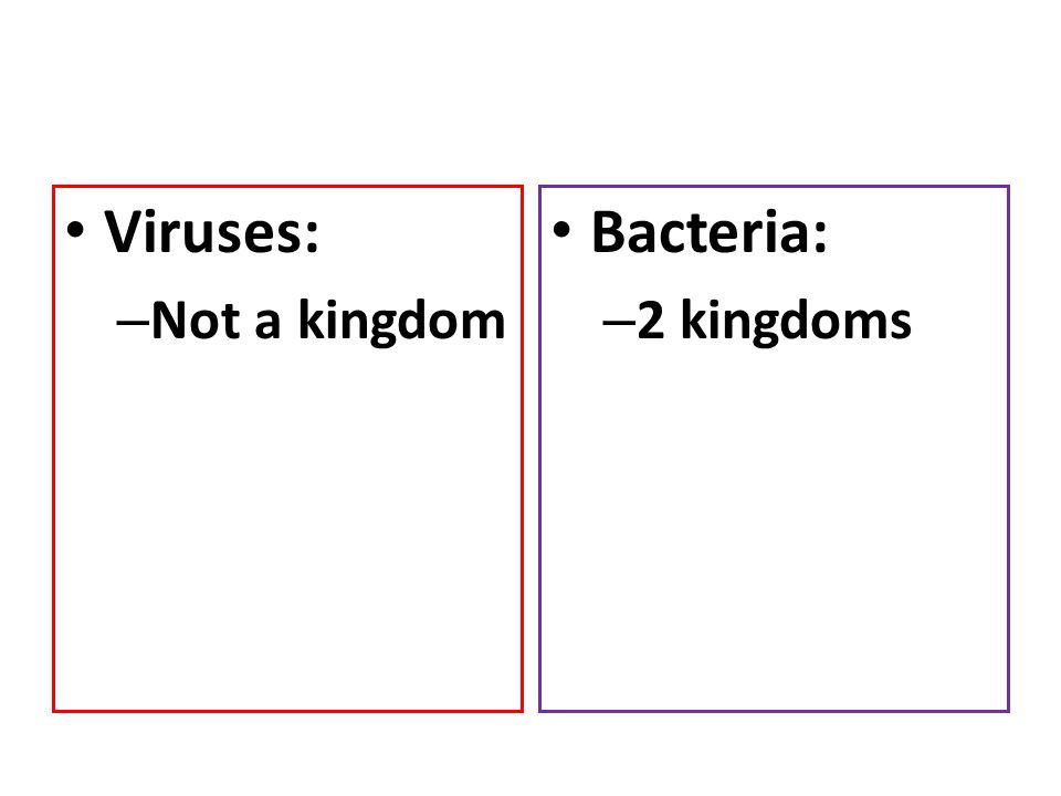 Viruses: – Not a kingdom Bacteria: – 2 kingdoms