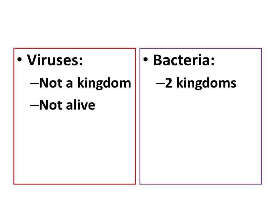Viruses: – Not a kingdom – Not alive Bacteria: – 2 kingdoms