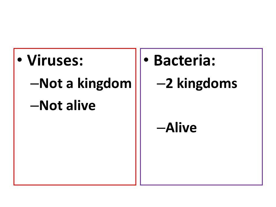 Viruses: – Not a kingdom – Not alive Bacteria: – 2 kingdoms – Alive