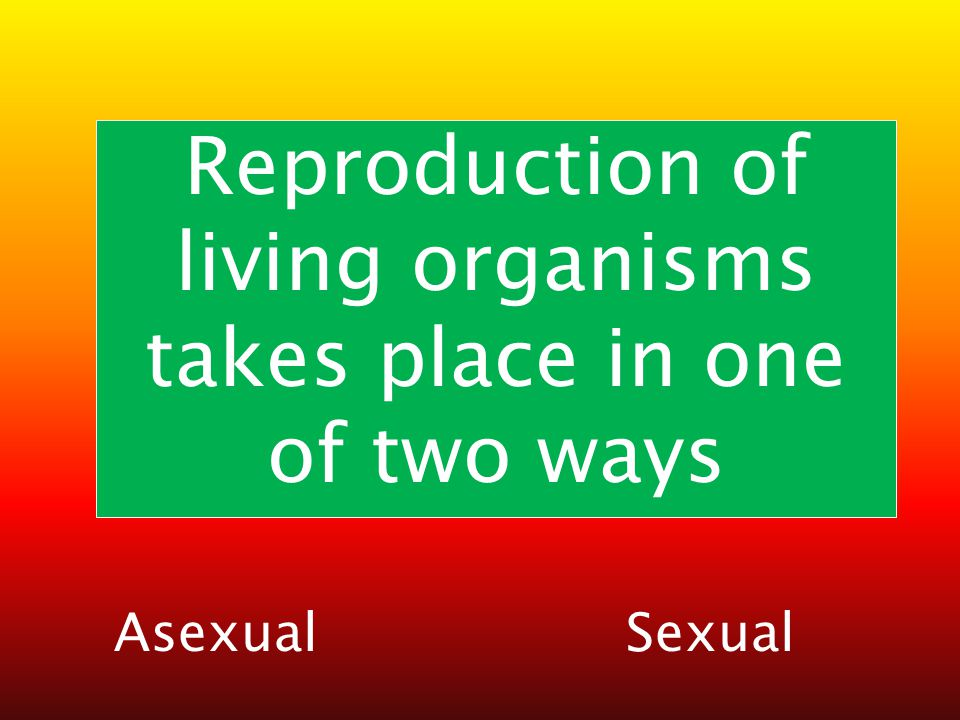 Reproduction of living organisms takes place in one of two ways AsexualSexual