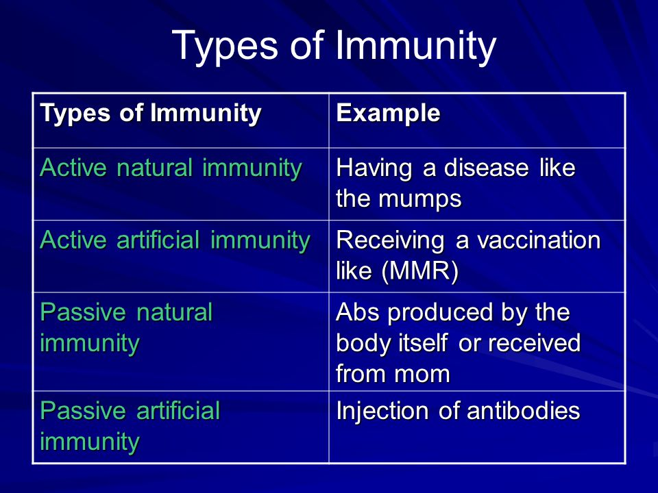 Types of Immunity Example Active natural immunity Having a disease like the mumps Active artificial immunity Receiving a vaccination like (MMR) Passiv