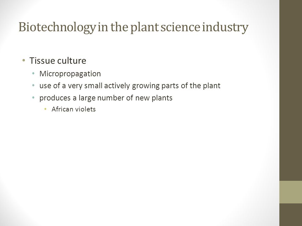 Biotechnology in the plant science industry Tissue culture Micropropagation use of a very small actively growing parts of the plant produces a large n