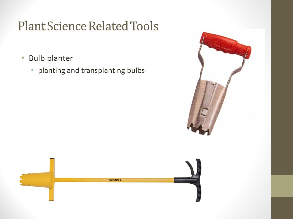 Plant Science Related Tools Bulb planter planting and transplanting bulbs