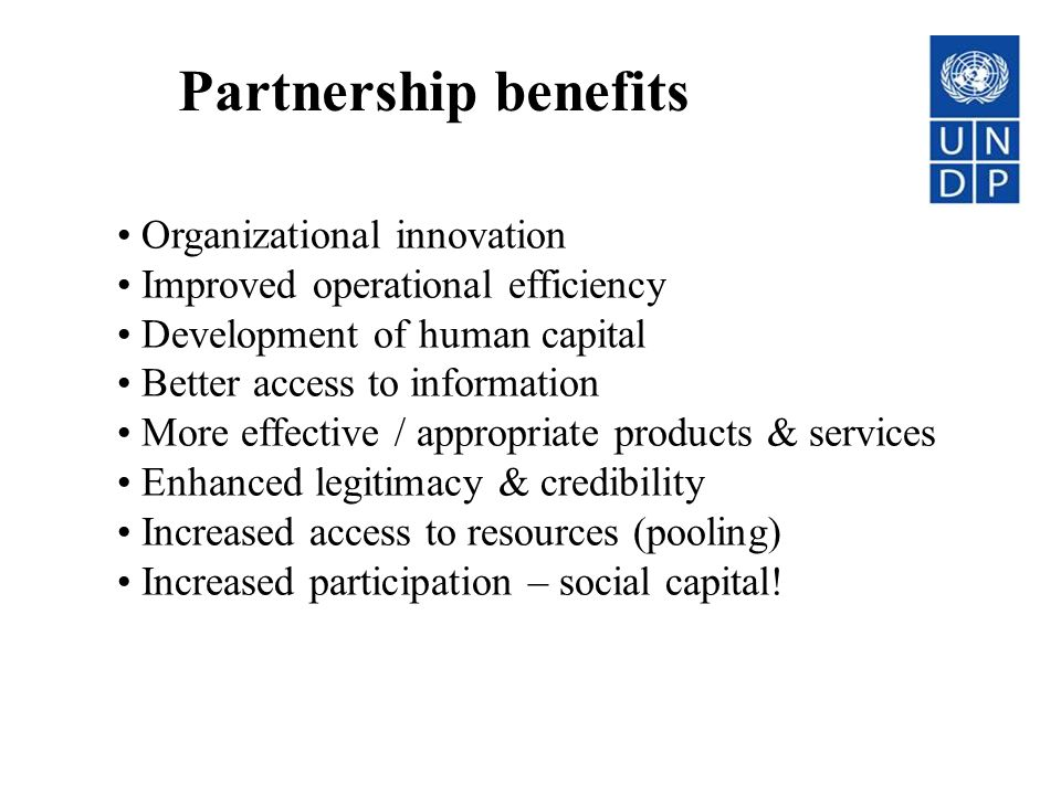 Partnership benefits Organizational innovation Improved operational efficiency Development of human capital Better access to information More effectiv