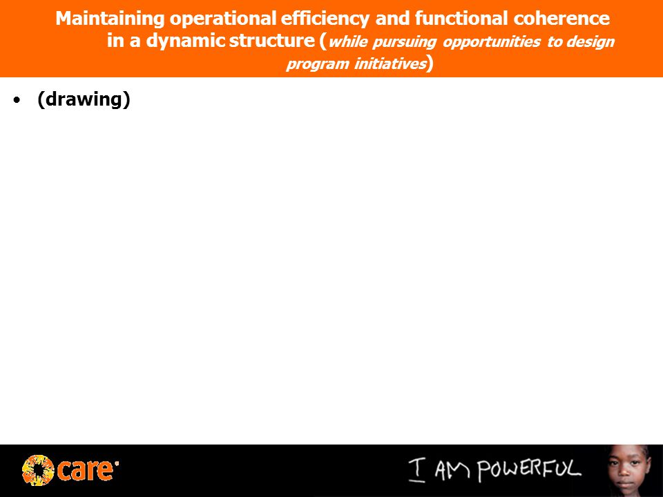Maintaining operational efficiency and functional coherence in a dynamic structure ( while pursuing opportunities to design program initiatives ) (drawing)