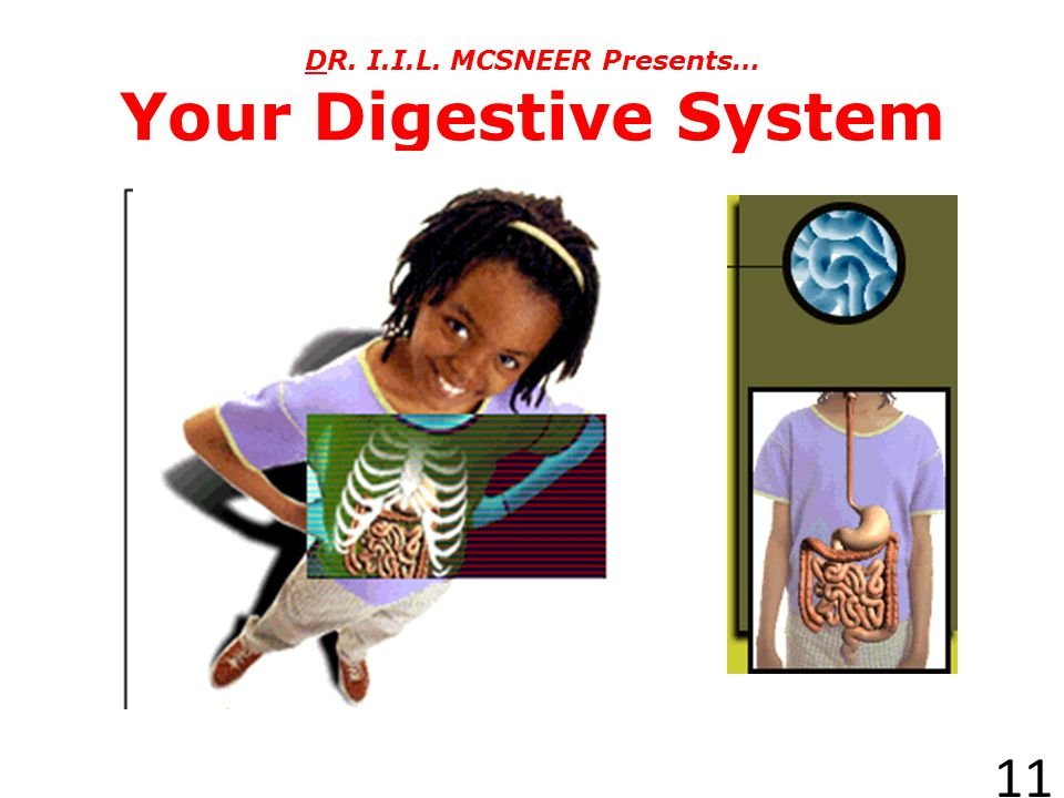 http://www.agen.ufl.edu/~chyn/age2062/lect/lect_19/lect_19.htm Your Body Systems (Part 2) =excretory 10