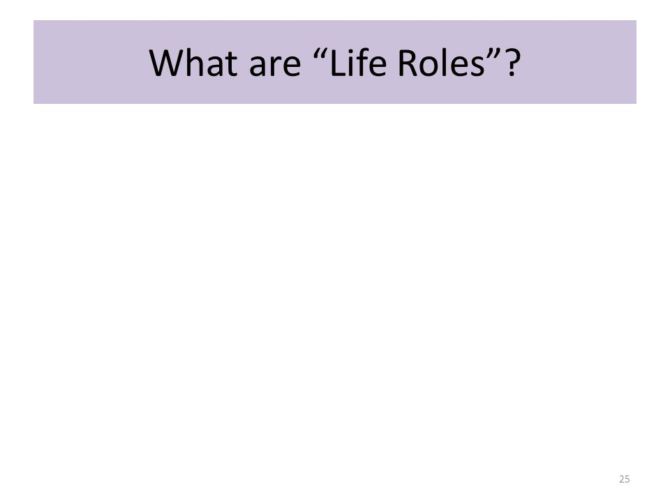 What are Life Roles 25