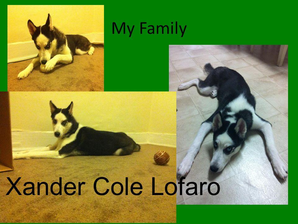 My Family Xander Cole Lofaro