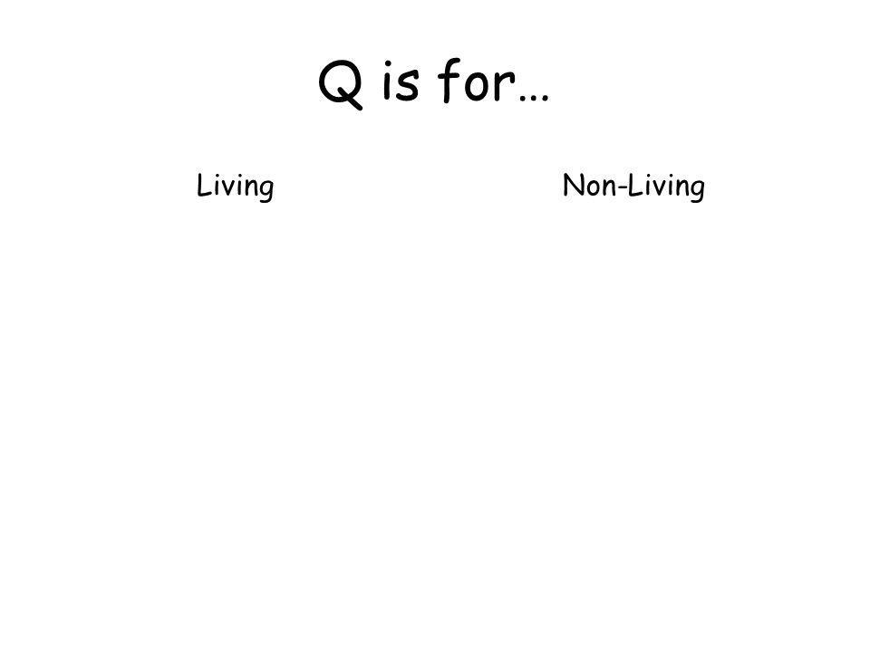 Q is for… LivingNon-Living