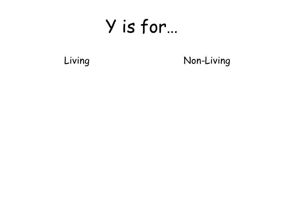 Y is for… LivingNon-Living