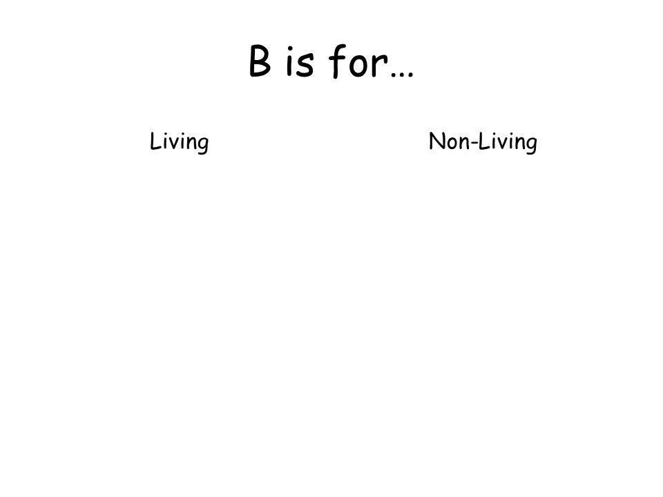 B is for… LivingNon-Living