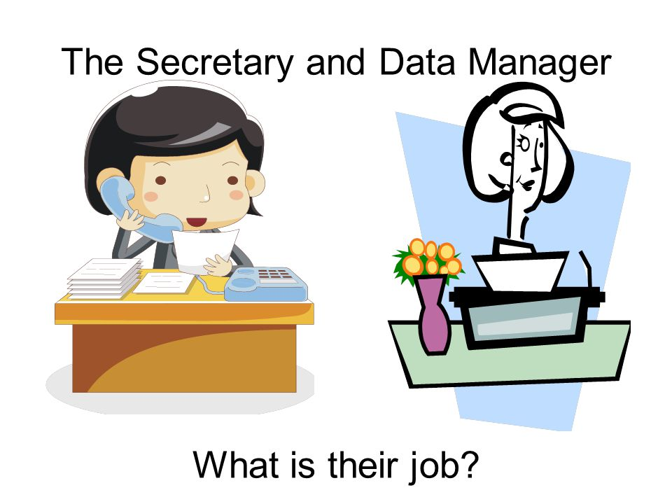 The Secretary and Data Manager What is their job