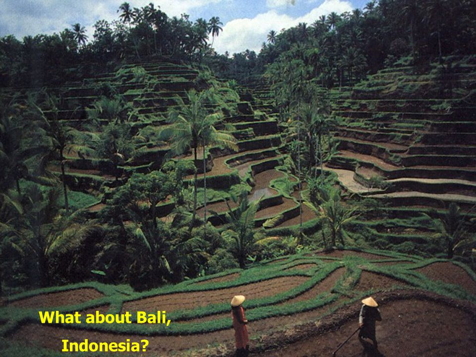 What about Bali, Indonesia?