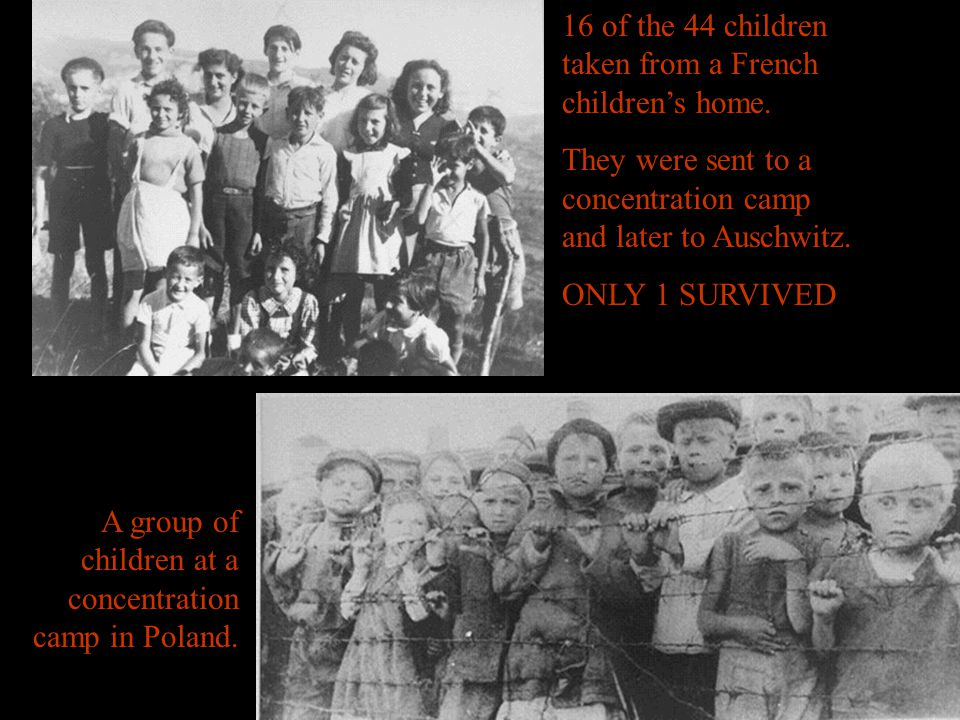 16 of the 44 children taken from a French children's home. They were sent to a concentration camp and later to Auschwitz. ONLY 1 SURVIVED A group of c
