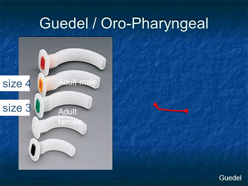 Guedel / Oro-Pharyngeal Adult male Adult female Guedel size 4 size 3