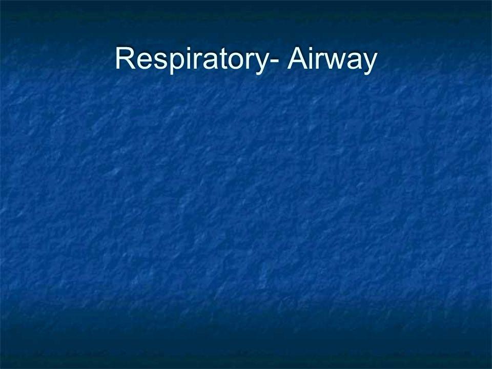 Respiratory- Airway