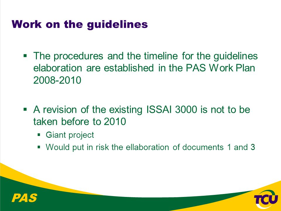 PAS Work on the guidelines  The procedures and the timeline for the guidelines elaboration are established in the PAS Work Plan 2008-2010  A revision of the existing ISSAI 3000 is not to be taken before to 2010  Giant project  Would put in risk the ellaboration of documents 1 and 3