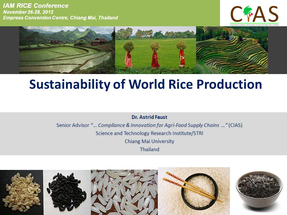 Sustainability of World Rice Production Dr.