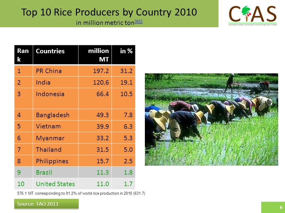 Top 10 Rice Producers by Country 2010 in million metric ton [61] [61] 6 Ran k Countriesmillion MT in % 1PR China India Indonesia Bangladesh Vietnam Myanmar Thailand Philippines Brazil United States Source: FAO MT corresponding to 91.2% of world rice production in 2010 (631.7) 6